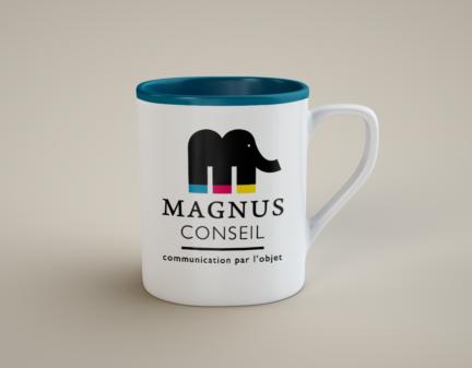MAGNUS CONSEIL